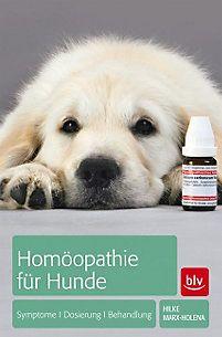 Homöopathie für Hunde Buch