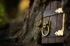 Fairytale entrance