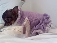 dogs+crochet | Free Pattern for the A-Line Ruffled Dog Sweater Dress ...