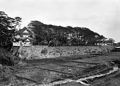 Odawara castle moat as rice paddy ca. 1871