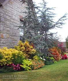 Unique by Design l Helen Weis, designs from my home state Oklahoma! planting bed, landscape design, landscape architecture_blue cedar on corner Outdoor Landscaping, Landscaping Plants, Front Yard Landscaping, Outdoor Gardens, Landscaping Ideas, Backyard Ideas, Landscape Architecture, Landscape Design, Garden Design
