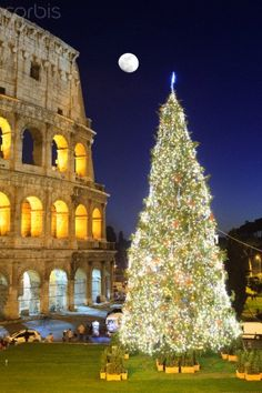Christmas in Colosseum, Rome. Our tips for 25 places to visit in Italy: http://www.europealacarte.co.uk/blog/2012/01/12/what-to-do-in-italy/