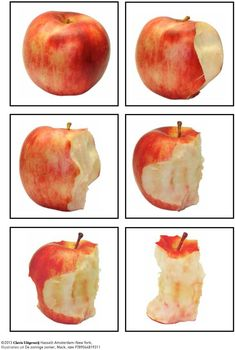 Sequencing Pictures, Story Sequencing, Sequencing Activities, Apple Activities, Fall Preschool, Apple Seeds, Montessori Materials, Math For Kids, Food Themes