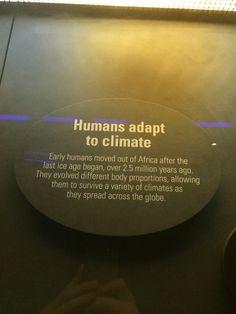 humans adapting