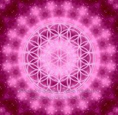Színek jelentése: Rózsaszín - Fényörvény.hu Celestial, Karma, Pink, Colour, Color, Pink Hair, Roses, Colors