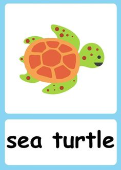 Baby Flash Cards, English Activities For Kids, Flashcards For Kids, Fruits For Kids, Cool Gifts For Kids, English Fun, Sea Theme, Animal Cards, Show And Tell