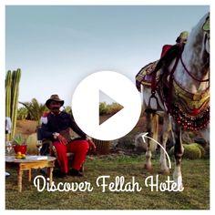 Felah Hotel - Marrakesch www.fellah-hotel.com