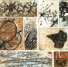 Hedgrow by Kerry Buck, photopolymer & collagraph.