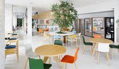 GREEN DISPLAY 株式会社グリーンディスプレイ | PLANTSCAPING | WORKS | OFFICE | 東映アニメーション株式会社 中野オフィス