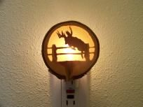 Whitetail Buck Over Fence Night Light