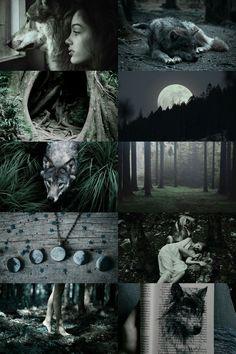Dark forest wolf witch