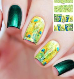 Peacock Feathers Water Decals Nail Art # 21786