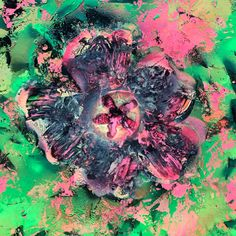 Mixed Media Artists, Hibiscus, Painting, Painting Art, Paintings, Painted Canvas, Drawings
