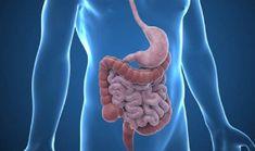 Gastroenteroloji Hangi Hastalıklarla İlgilenir?