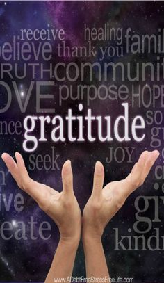 Finding gratitude in the most unlikely circumstances is the challenge in our everyday lives. But when we find it, we are immensely blessed.