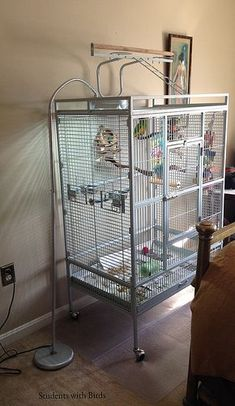 Hack 1 - Office mat under cage to help contain messes #parrotcare