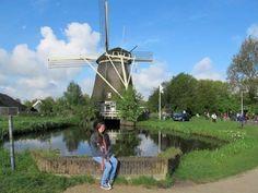 Holanda, conhecida por seus moinhos e também por suas flores. Foto: Raphaela Dhame,