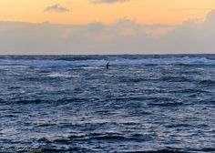 Every morning in Kauai, religiously, rain or shine, this local was out on the water. Oh to live as he does....
