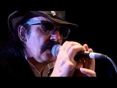 Drahdiwaberl - Parkinson Blues