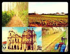 Portuguese Way section 3 : Coimbra to Porto