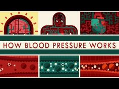 How blood pressure works