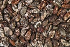 Cocoa is traded from America to Europe. The trading has become so big that it is hard for smaller farmers to trade and buy cocoa . This is not an extreme consequence. I do think it is unexpected , but maybe they knew it was a possibility.