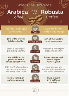 What Is Arabica Coffee, Arabica Coffee Beans, Coffee Farm, Coffee Shop, How To Store Potatoes, Coffee Review, Best Coffee, Bitter, Brewing