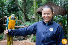 Um dos atrativos da cidade de Foz do Iguaçu é o Parque das Aves e valeu muito a pena conhecer <3  http://www.marolacomcarambola.com.br/parque-das-aves-em-foz-do-iguacu/