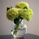 SIMON PEARCE VASE…Handblown vase is classic and timeless.