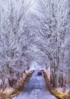 Winter road (no location given) by Andy58/András  Schafer / 500px