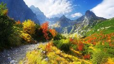 fall wallpapers   Autumn Scenery Wallpaper, Autumn Nature Scenery Wallpapers