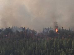 The King Fire Chronicles: Life on the Edge of a Natural Disaster - See more at: http://www.theorganicprepper.ca/the-king-fire-chronicles-life-on-the-edge-of-a-natural-disaster-09242014#sthash.zhhVRmaS.dpuf
