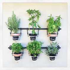 Really love the #kmarthack @lisaparker84 has done on her pots by adding a change in paint colour and adding some #chalkboard paint. These look perfect in her Kmart holder which make a lovely #herb / chilli #garden . @lisaparker84 thanks for sending me this so I could share to inspire others. Xo :) #kmartausinspire #kmartstyling #regram #kmartaus #kmartaustralia #living #outdoor #styling #interiordesigning #style @kmartaus_inspire