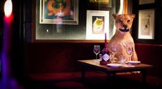 Most curious cocktail bars in London.