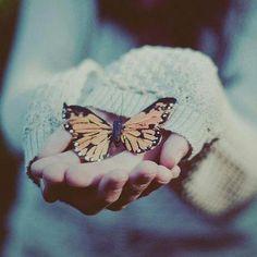 A little butterfly in autumn..Maybe it's dead? :D