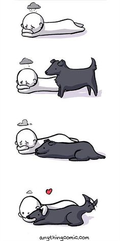 This is why I will always be a dog person.