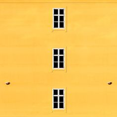 Windows and security cameras by Dragan Győrfi on 500px yellow