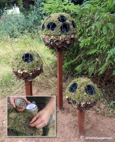 Seed ball and insect motel topiaries on posts
