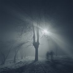 ✯ At Night .. by ~Alshain4✯