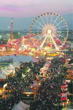 LA County Fair. Photo, not a painting. Every school kid in the West Covina School District got a free ticket to go to the fair each year. My favorite pavilion was the 4-H Table Settings... you can see I still like that cause I have a TON of tablescape boards! LOL Lyn Phace-Painter.