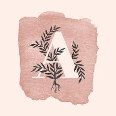 Stevie Dutson Art + Design Los Angeles Brand Designer and Illustrator Watercolor Typography, Typography Logo, Watercolor Illustration, Watercolor Art, Alphabet, Watercolor Projects, Floral Letters, Planner, Letter Art