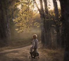 Into the woods to make magical memories.  Photograph *** by Elena Shumilova on 500px