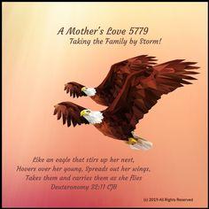 by Michelle Morton-Perez Mental Health Resources, Mothers Love, Transgender