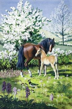 C F Tunnicliffe - Mare, Foal And Hawthorn Children's Book Illustration, Book Illustrations, Nature Artists, Ladybird Books, British Wildlife, Feather Painting, Royal College Of Art, Classic Paintings, Equine Art