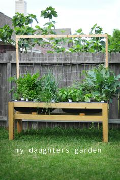 """The bloggers says, """"Great for wheelchairs and walkers!""""  I am temporarily in a wheelchair so this would perfect for me.  Look at all the vegetables in this garden using such a small space."""