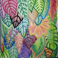 The Jungle Leaves A-side #magicaljungle #selvamagica #folhagem #leaves #jungleleaves #adultcoloring #adultcoloringbook #becreative #coloring #coloringbook #drawing #doodle #forest #livrodecolorir #mindfulness @johannabasford #zentangle