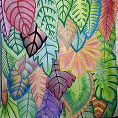 The Jungle Leaves A-side #magicaljungle #selvamagica #folhagem #leaves #jungleleaves #adultcoloring #adultcoloringbook #becreative #coloring #coloringbook #drawing #doodle #forest #livrodecolorir #mindfulness @johannabasford #zentangle