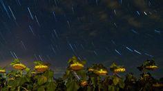 Astonishing Stars Illuminate the Night Sky (PHOTOS) - weather.com