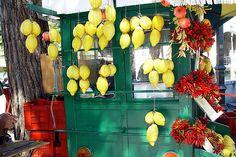 Gardasee - SIRMIONE - Italien - Italy - Citron #TuscanyAgriturismoGiratola