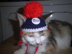 Hey, I found this really awesome Etsy listing at https://www.etsy.com/listing/162682049/crocheted-cat-or-dog-hats-new-england